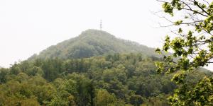 2020.05.15 01藻岩山