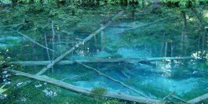 2020.08.13 神の子池(清里町)
